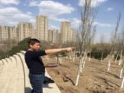风水大师秦华为北京一大型地产项目进行风水堪舆