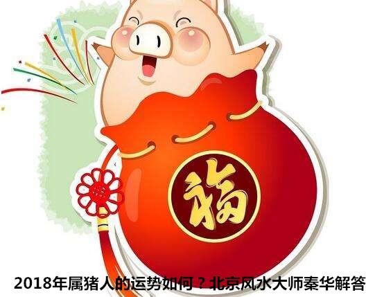 2018年属猪人的运势详解-北京皇极易经研究中心